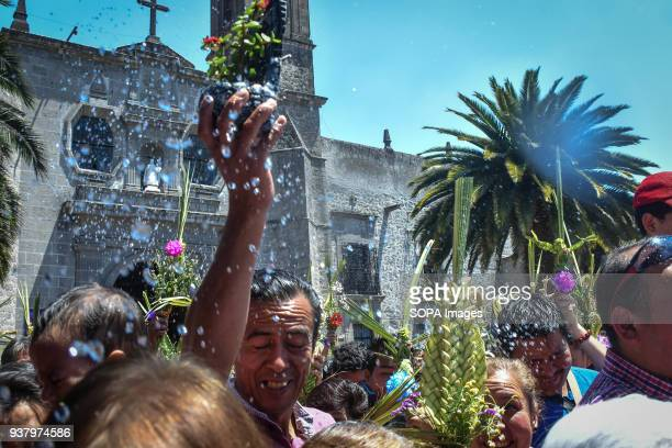 A man seen holding palm leaf during the celebration of the Mass on Palm Sunday at Iglesia de Los Remedios Palm Sunday is a Christian feast that falls...