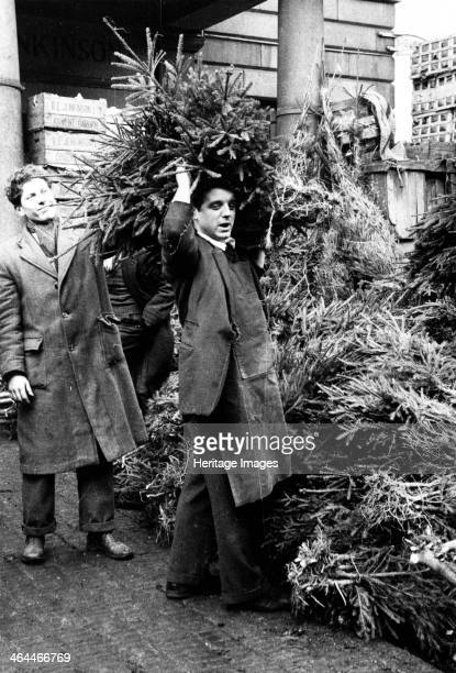 Man selling a Christmas tree Covent Garden Market London 1952