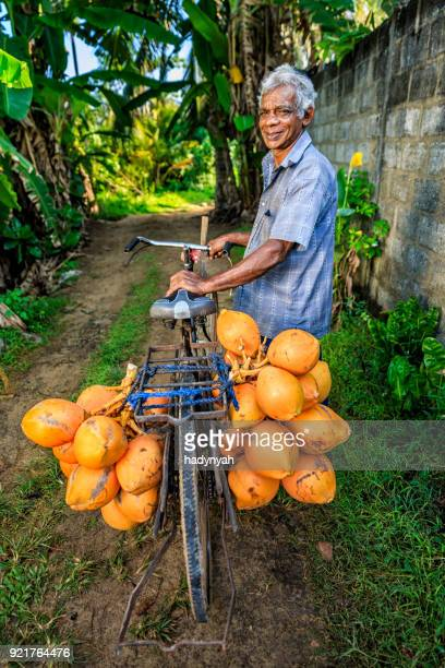 man selling coconuts from his bike near mirissa, sri lanka - sri lankan culture stock pictures, royalty-free photos & images