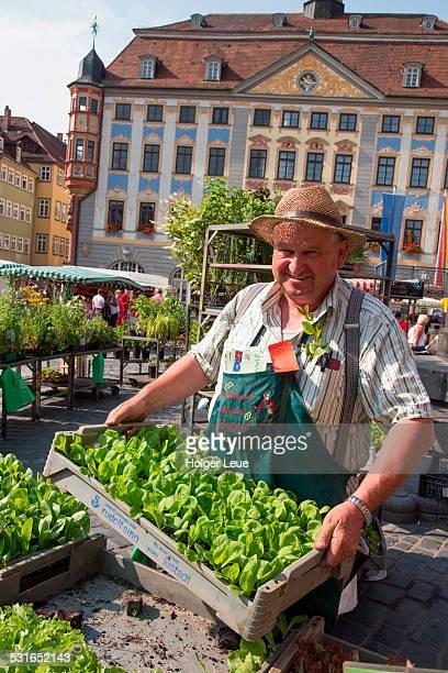 Man sells vegetables at farmers market