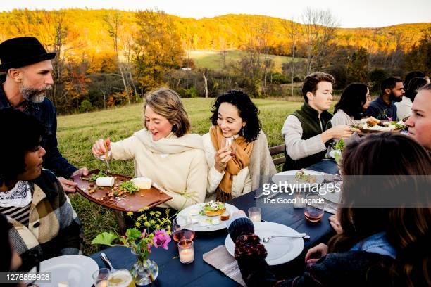 man serving food to guests at dinner party in field - kaasplank stockfoto's en -beelden