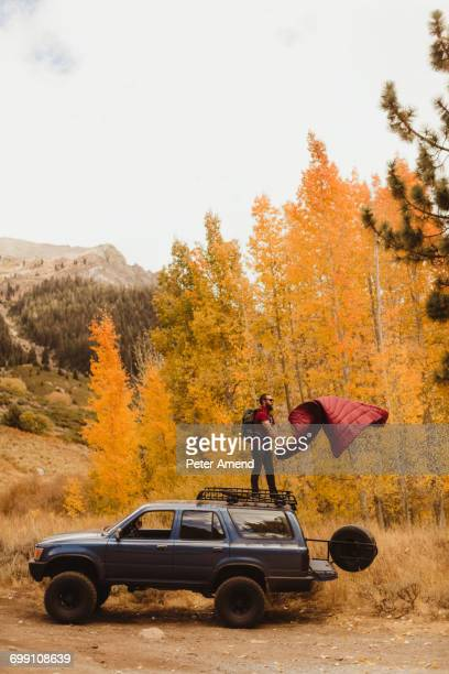 'Man shaking sleeping bag on top of vehicle in autumn forest, Mineral King, Sequoia National Park, California, USA'