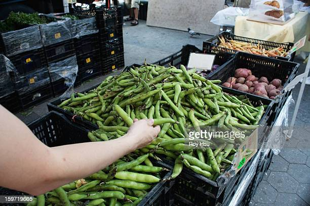 man shopping for beans at farmers market