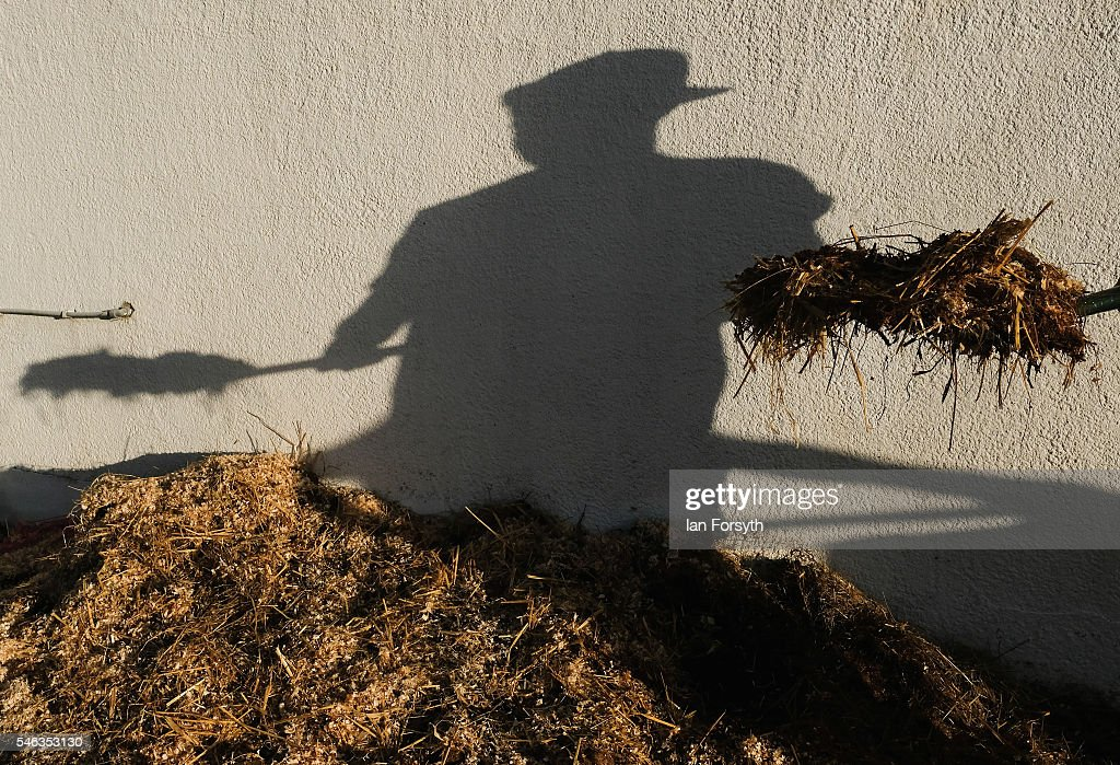 A man shovels horse manure as he mucks out the stables at the Great Yorkshire Show on July 12, 2016 in Harrogate, England. The annual Great Yorkshire Show now in its 158th year is the UK's premier agricultural event and brings together agricultural displays, livestock events, farming demonstrations, food, dairy and produce stands as well as equestrian events to the thousands of visitors who attend the popular show over three days to celebrate the farming and agricultural community and their way of life.