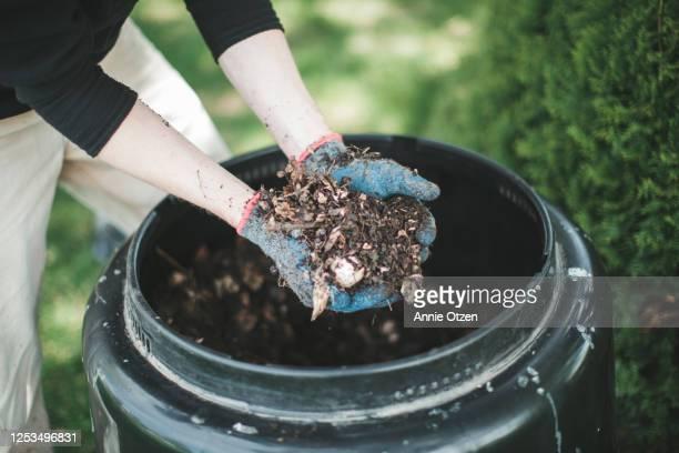 man showing compost - humus photos et images de collection