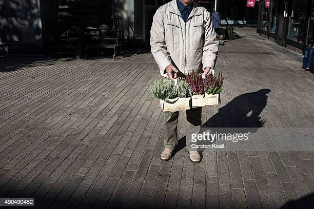 A man shows his bought flowers in the pedestrian street on September 28 2015 in Wolfsburg Germany Wolfsburg was initially built by authorities under...