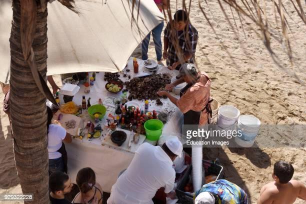 Man shucking oysters for sale on Los Muertos beach Puerto Vallarta Mexico.