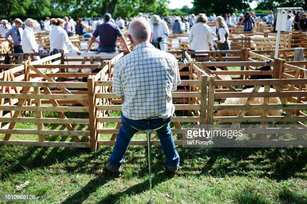 A man sits on a shooting stick near the sheep pens during 152nd the Ryedale Country Show on July 31 2018 in Kirbymoorside England Held in Welburn...