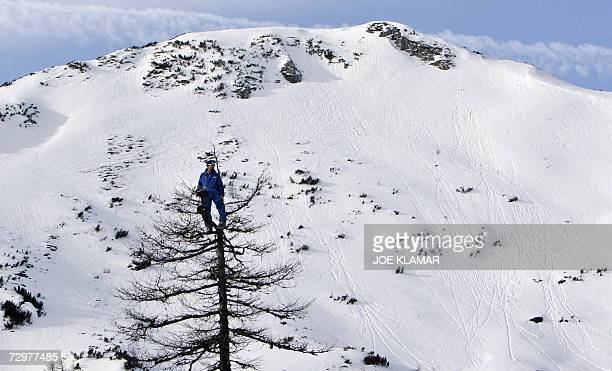A man sits on top of a tree to have better view of women's downhill practice during alpine FIS World Cup in AltenmarktZauchensee on 11 December 2006...