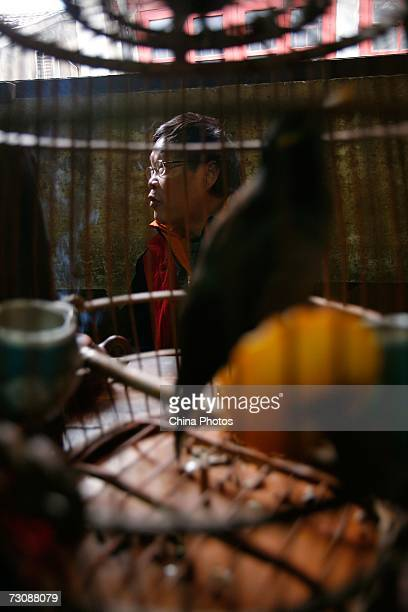 Man sitting beside his bird cage enjoys tea at a Laohuzao teahouse at an alleyway January 23, 2007 in Shanghai, China. Laohuzao is a traditional...