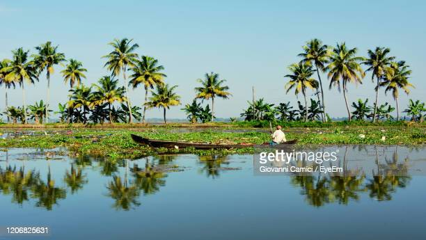 man sitting in boat in lake against palm tree - kerala stock pictures, royalty-free photos & images