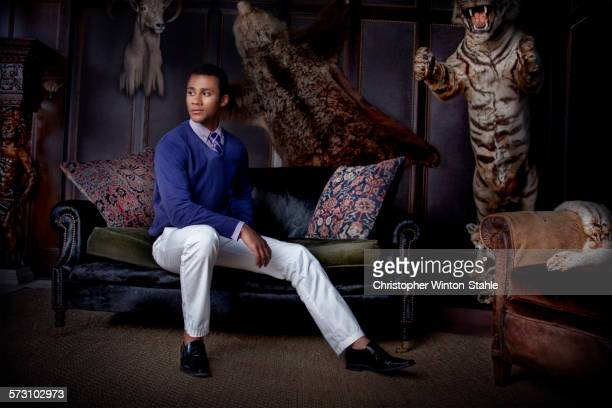 man sitting in parlor with stuffed animals - lion feline stock pictures, royalty-free photos & images