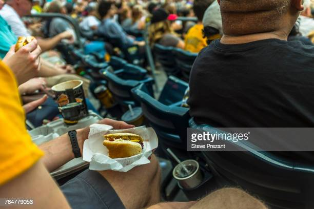 man sitting in stadium eating hot dog - mid section stock pictures, royalty-free photos & images