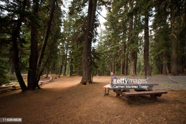 man sitting on a bench near lake made with wood at the todd lake, oregon. - deschutes national forest stock pictures, royalty-free photos & images