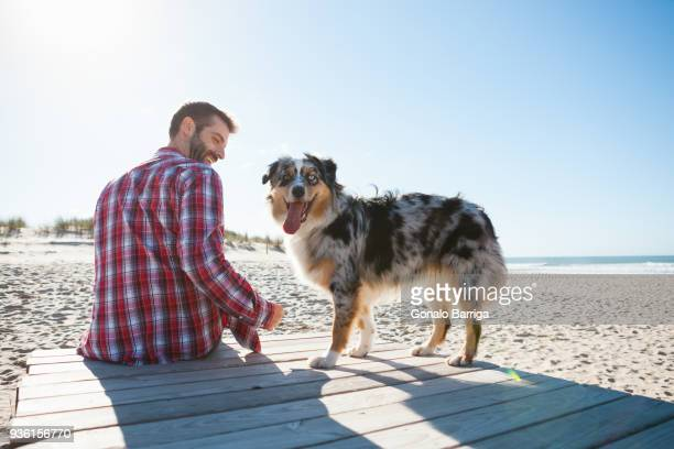 man sitting on beach boardwalk with dog - one animal stock pictures, royalty-free photos & images