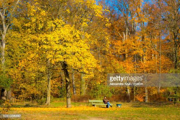 Man Sitting On Bench Against Trees In Park During Autumn