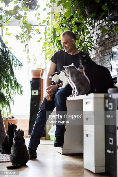 Man sitting on desk surrounded by cats