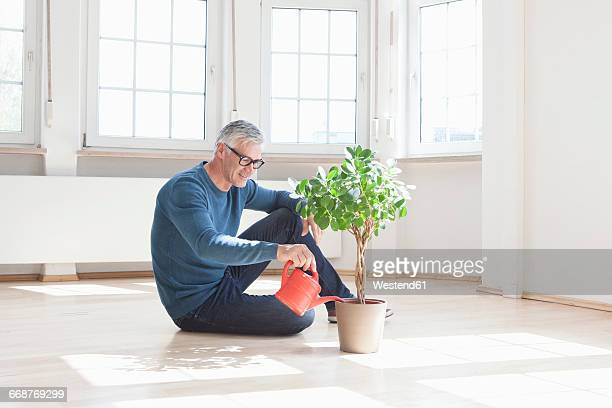 Man sitting on floor watering plant in empty apartment