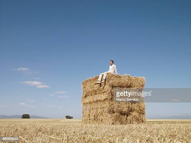 man sitting on stack of hay bales - heno fotografías e imágenes de stock