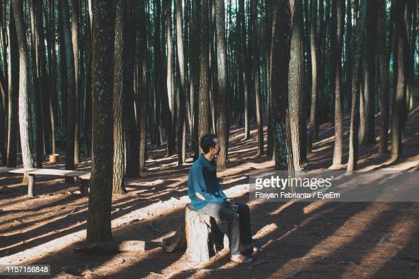man sitting on tree stump in forest - tree stump stock pictures, royalty-free photos & images