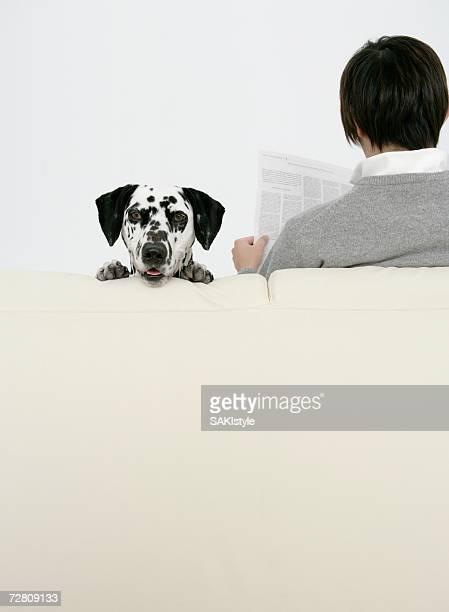 Man sitting sofa with dalmatian