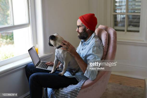 man sitting with laptop together with puck dog - red pants stock pictures, royalty-free photos & images