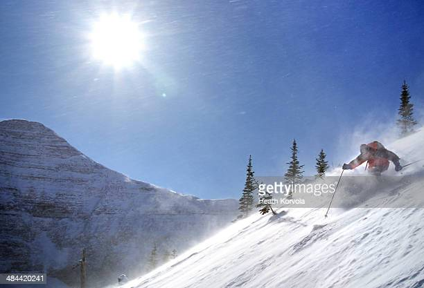 Man skiing in windy but sunny conditions.