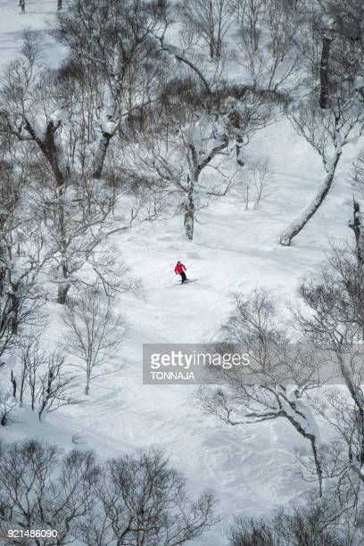 a man skis in niseko, japan - hokkaido stock pictures, royalty-free photos & images