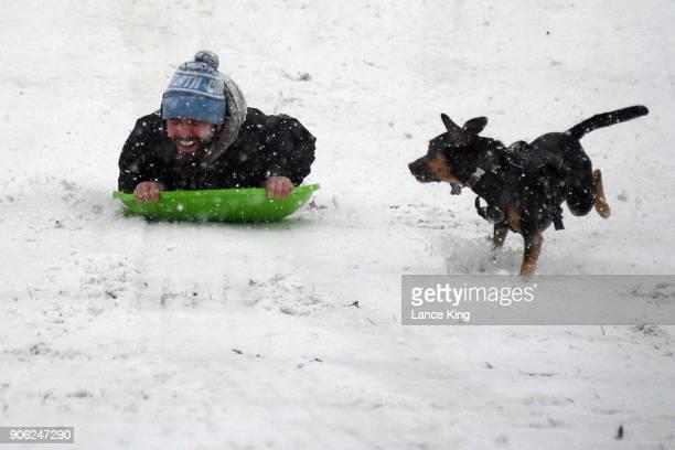 A man sleds as his dog follows along at Dorothea Dix Park during a snow storm on January 17 2018 in Raleigh North Carolina North Carolina Gov Roy...