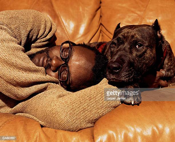man sleeping on sofa next to pit-bull terrier, close-up - next to stock pictures, royalty-free photos & images