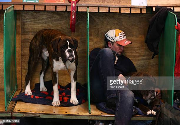 A man sleeps with his Boxer dog on the second day of Crufts dog show at the National Exhibition Centre on March 6 2015 in Birmingham England First...