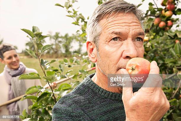 Man smelling fresh apple in orchard