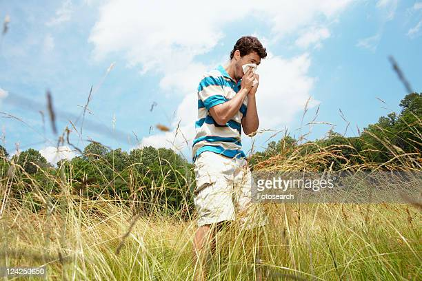 man sneezing in field (low angle view) - tree man syndrome stock photos and pictures