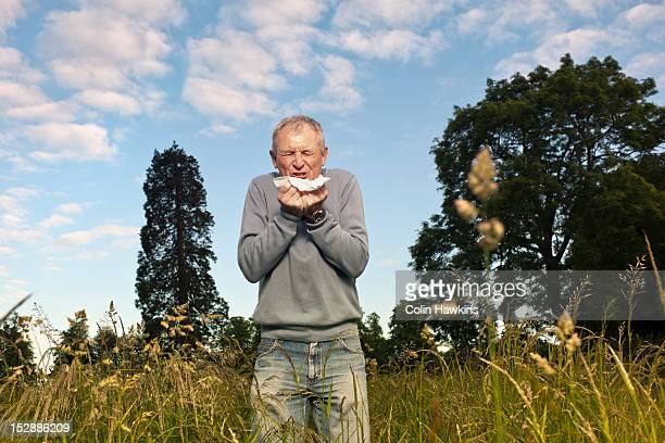 man sneezing in tall grass - colin hawkins stock pictures, royalty-free photos & images