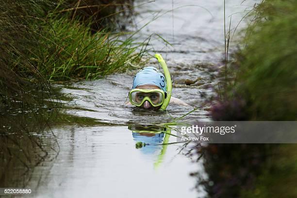 Man Snorkeling in the World Bog Snorkeling Championships