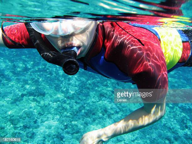 Man snorkeling with wetsuit underwater in Maui, Hawaii