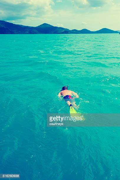 man snorkelling. - whitsunday island stock photos and pictures