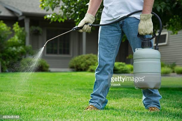 Man spraying weedkliller on lawn