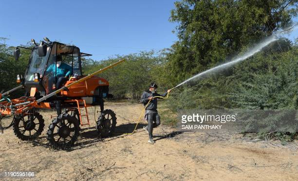 A man sprays insecticides to kill locusts in trees near Miyal village in Banaskantha district some 250km from Ahmedabad on December 27 2019 A massive...