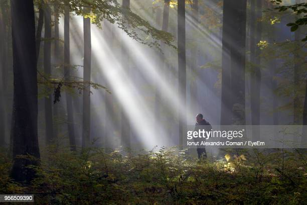 Man Standing Against Trees In Forest