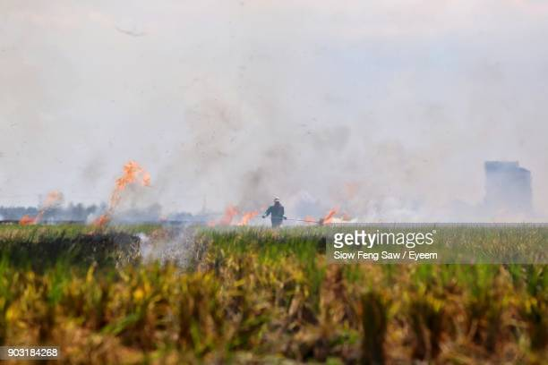Man Standing Amidst Fire In Farm