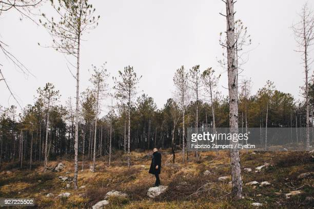 man standing by trees in forest against clear sky - fabrizio zampetti foto e immagini stock