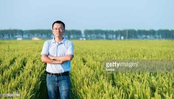 田んぼに立っている男 - ポロシャツ ストックフォトと画像