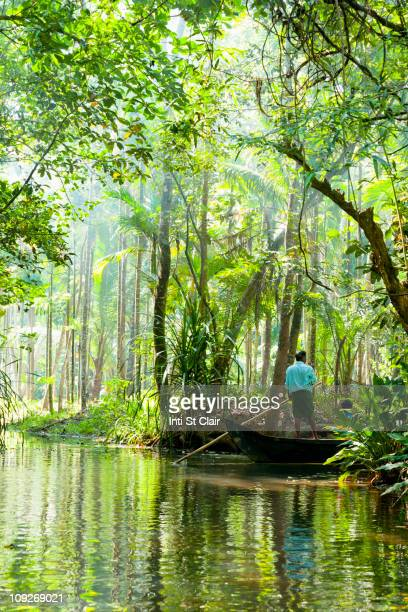 man standing in boat on tranquil forest river - kochi india stock pictures, royalty-free photos & images