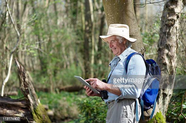 man standing in forest using digital tablet. - long sleeved stock pictures, royalty-free photos & images