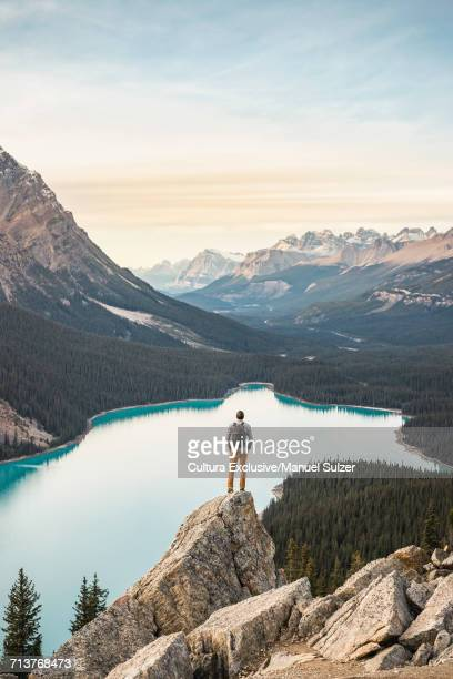 Man standing, looking at view, viewpoint overlooking Peyto Lake, Lake Louise, Alberta, Canada