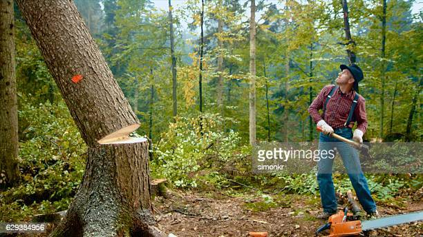 Man standing near falling tree