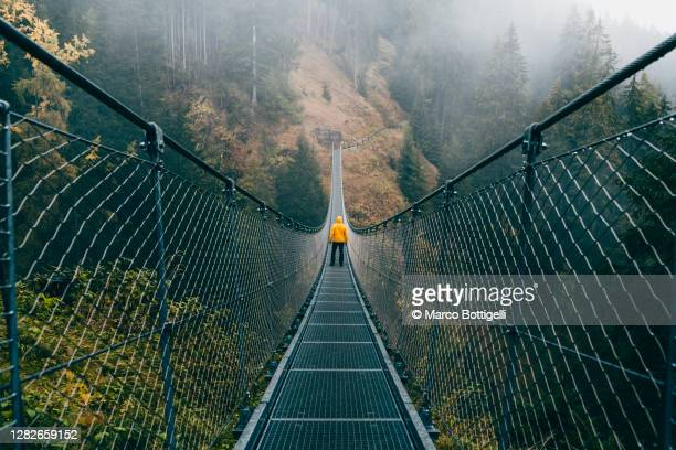 man standing on a suspension bridge in the forest - suspension bridge stock pictures, royalty-free photos & images