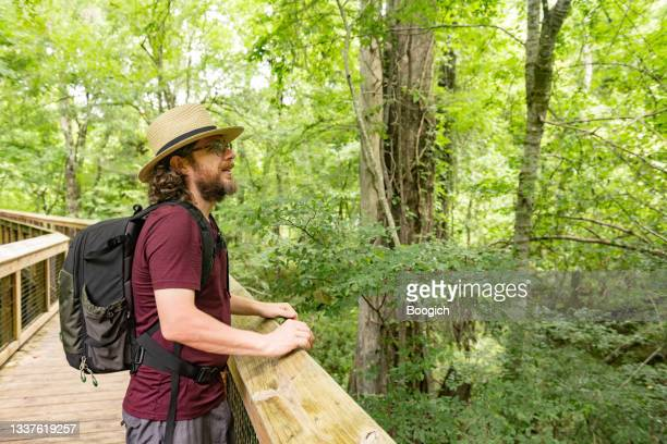 man standing on boardwalk in the forest day in ichetucknee springs state park florida - florida us state stock pictures, royalty-free photos & images