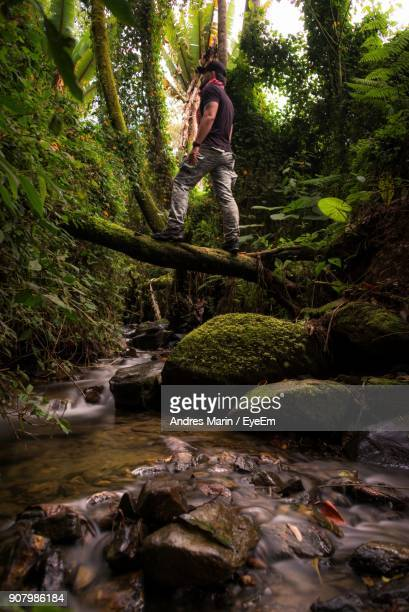 Man Standing On Fallen Tree Over Stream In Forest